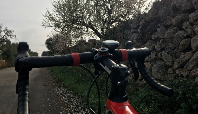 Mallorca BicycleTransportation
